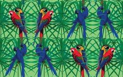 Άνευ ραφής σχέδιο με τους παπαγάλους macaw που κάθονται επάνω Στοκ εικόνα με δικαίωμα ελεύθερης χρήσης