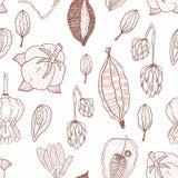 Άνευ ραφής σχέδιο με τους σπόρους και τους λοβούς σπόρου στα χρώματα φθινοπώρου διανυσματική απεικόνιση