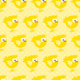Άνευ ραφής σχέδιο με το κοτόπουλο στο κίτρινο διαστιγμένο υπόβαθρο Απεικόνιση αποθεμάτων