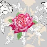 Άνευ ραφής σχέδιο με τριαντάφυλλο-05 Στοκ Φωτογραφία