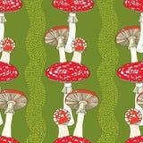 Άνευ ραφής σχέδιο με amanita και τα λωρίδες Δηλητηριώδες μανιτάρι κόκκινος-φλυτζανιών διανυσματική απεικόνιση