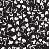 Άνευ ραφής σχέδιο λουλουδιών άνηθου Corolla στοκ φωτογραφία με δικαίωμα ελεύθερης χρήσης