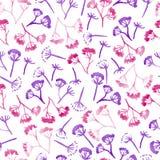 Άνευ ραφής σχέδιο λουλουδιών άνηθου corolla Watercolor στοκ εικόνα με δικαίωμα ελεύθερης χρήσης