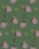 Άνευ ραφής σχέδιο λουλουδιών με τα hydrangeas Στοκ εικόνα με δικαίωμα ελεύθερης χρήσης