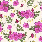 Άνευ ραφής σχέδιο λουλουδιών, υπόβαθρο Απεικόνιση αποθεμάτων