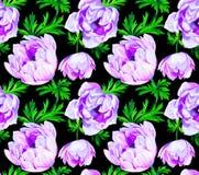 Άνευ ραφής σχέδιο λουλουδιών Anemone διανυσματική απεικόνιση