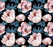 Άνευ ραφής σχέδιο λουλουδιών Anemone απεικόνιση αποθεμάτων