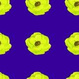 Άνευ ραφής σχέδιο λουλουδιών anemone Watercolor Στοκ Εικόνες