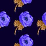 Άνευ ραφής σχέδιο λουλουδιών watercolor Anemone Στοκ Εικόνες