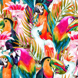 Άνευ ραφής σχέδιο παπαγάλων Watercolor Στοκ φωτογραφία με δικαίωμα ελεύθερης χρήσης