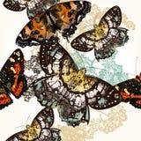 Άνευ ραφής σχέδιο πεταλούδων με τις ζωηρόχρωμες πεταλούδες Στοκ Εικόνες