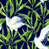 Άνευ ραφής σχέδιο πουλιών γερανών Watercolor ασιατικό Στοκ εικόνα με δικαίωμα ελεύθερης χρήσης