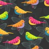 Άνευ ραφής σχέδιο πουλιών στο μαύρο υπόβαθρο Στοκ εικόνες με δικαίωμα ελεύθερης χρήσης