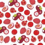 Άνευ ραφής σχέδιο ροδιών, lychee και mangosteen Γραφική τέχνη Στοκ φωτογραφίες με δικαίωμα ελεύθερης χρήσης