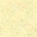 Άνευ ραφής σχέδιο σκιαγραφιών φύλλων σφενδάμου Στοκ Φωτογραφία