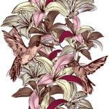 Άνευ ραφής σχέδιο ταπετσαριών με τα λουλούδια και τα κολίβρια κρίνων Στοκ Φωτογραφίες