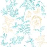 Άνευ ραφής σχέδιο ταπετσαριών με τα λουλούδια και τις πεταλούδες Στοκ εικόνες με δικαίωμα ελεύθερης χρήσης