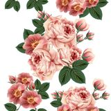 Άνευ ραφής σχέδιο ταπετσαριών με τα τριαντάφυλλα στο αναδρομικό ύφος Στοκ Εικόνα