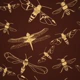Άνευ ραφής σχέδιο της χρυσών λιβελλούλης και της μέλισσας. Διανυσματική απεικόνιση Στοκ Εικόνα