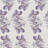 Άνευ ραφής σχέδιο του βατόμουρου με τον κλάδο και τα φύλλα Στοκ Φωτογραφία
