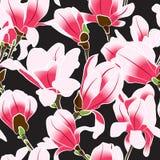 Άνευ ραφής σχέδιο του magnolia Στοκ Φωτογραφία