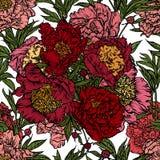 Άνευ ραφής σχέδιο των κόκκινων peonies Στοκ Εικόνες