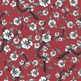 Άνευ ραφής σχέδιο των κλάδων και των άσπρων λουλουδιών σε ένα ρόδινο υπόβαθρο Αφηρημένο ανθίζοντας δέντρο μηλιάς σε γραπτό Στοκ Εικόνες