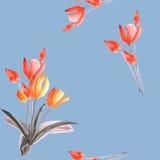 Άνευ ραφής σχέδιο των τουλιπών με τα κόκκινα λουλούδια σε ένα μπλε υπόβαθρο watercolor στοκ φωτογραφίες
