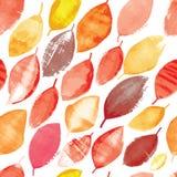 Άνευ ραφής σχέδιο των φωτεινών φύλλων φθινοπώρου στο ύφος grunge Στοκ Εικόνες