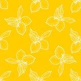 Άνευ ραφής σχέδιο, υπόβαθρο λεμονιών με τα κίτρινα και άσπρα στοιχεία, γεωμετρικό σχέδιο Στοκ φωτογραφία με δικαίωμα ελεύθερης χρήσης