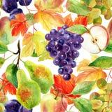 Άνευ ραφής σχέδιο φρούτων και μούρων Στοκ φωτογραφία με δικαίωμα ελεύθερης χρήσης
