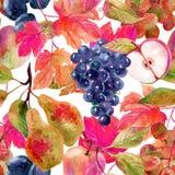 Άνευ ραφής σχέδιο φρούτων και μούρων Στοκ Φωτογραφία