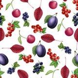 Άνευ ραφής σχέδιο φρούτων και μούρων Watercolor στοκ φωτογραφίες