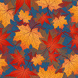 Άνευ ραφής σχέδιο φύλλων, διανυσματικό υπόβαθρο Κίτρινα και κόκκινα φύλλα φθινοπώρου σε ένα μπλε Για το σχέδιο της ταπετσαρίας, ύ Στοκ εικόνα με δικαίωμα ελεύθερης χρήσης