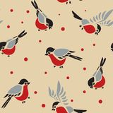 Άνευ ραφής σχέδιο Bullfinches Στοκ Εικόνα