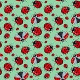 Άνευ ραφής σχέδιο Corel Κόκκινα ladybugs κινούμενων σχεδίων σε μια μπλε μέντα υποβάθρου Στοκ φωτογραφία με δικαίωμα ελεύθερης χρήσης