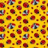 Άνευ ραφής σχέδιο Corel Κόκκινο κινούμενων σχεδίων ladybugs σε ένα κίτρινο υπόβαθρο Στοκ εικόνα με δικαίωμα ελεύθερης χρήσης