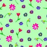 Άνευ ραφής σχέδιο watercolor Ζωηρόχρωμα αυγά και flowersστο πράσινο υπόβαθρο Στοκ Εικόνα