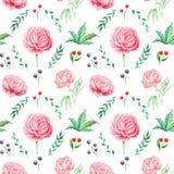 Άνευ ραφής σχέδιο watercolor με τα λουλούδια και τα φύλλα, που απομονώνεται στο άσπρο υπόβαθρο Στοκ εικόνα με δικαίωμα ελεύθερης χρήσης