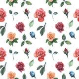 Άνευ ραφής σχέδιο watercolor με τα λουλούδια και τα φύλλα που απομονώνονται στο άσπρο υπόβαθρο Στοκ φωτογραφία με δικαίωμα ελεύθερης χρήσης