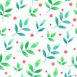 Άνευ ραφής σχέδιο Watercolor με τα πράσινα φύλλα και τα κόκκινα μούρα Στοκ Εικόνες