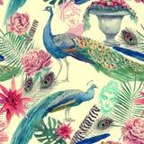 Άνευ ραφής σχέδιο watercolor με τα peacocks συρμένο χέρι Στοκ Εικόνα