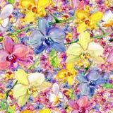 Άνευ ραφής σχέδιο Watercolor διανυσματική απεικόνιση