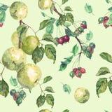 Άνευ ραφής σχέδιο Watercolor Στοκ φωτογραφία με δικαίωμα ελεύθερης χρήσης