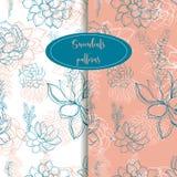 άνευ ραφής σύνολο προτύπων succulents graphics Ευγενές διάνυσμα τόνου ελεύθερη απεικόνιση δικαιώματος