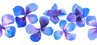 Άνευ ραφής σύνορα λουλουδιών watercolor στο λευκό Στοκ εικόνα με δικαίωμα ελεύθερης χρήσης