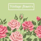 Άνευ ραφής σύνορα με τα εκλεκτής ποιότητας τριαντάφυλλα Διακοσμητικά αναδρομικά λουλούδια Εύχρηστος για το σκηνικό, υφαντικό, τυλ Στοκ Εικόνα