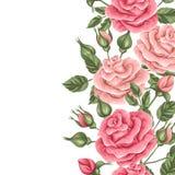 Άνευ ραφής σύνορα με τα εκλεκτής ποιότητας τριαντάφυλλα Διακοσμητικά αναδρομικά λουλούδια Εύχρηστος για το σκηνικό, υφαντικό, τυλ Στοκ φωτογραφίες με δικαίωμα ελεύθερης χρήσης