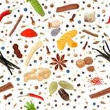 Άνευ ραφής σύνολο σχεδίων καρυκευμάτων μαγειρέματος Στοκ Εικόνες