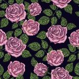 Άνευ ραφής σύσταση σχεδίων κεντητικής, ταπετσαρία, υπόβαθρο με τα όμορφα ρόδινα τριαντάφυλλα μαύρο floral διάνυσμα διακοσμήσεων Στοκ Φωτογραφία